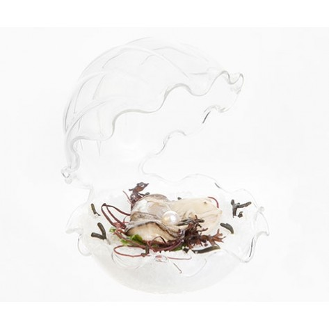 Krožnik za ostrige